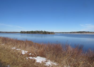 Lawrencetown Trail